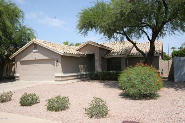 7234 E Naranja Avenue, Mesa, AZ 85209 (MLS #5806941) :: The W Group