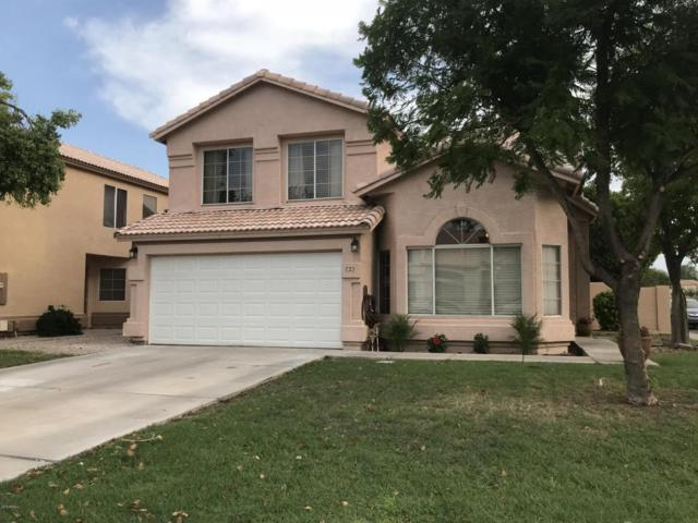 723 E Geronimo Street, Chandler, AZ 85225 (MLS #5806945) :: Realty Executives