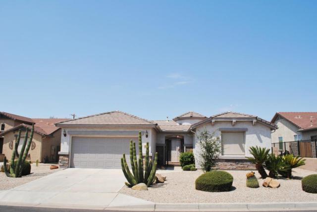 30792 N Orange Blossom Circle, San Tan Valley, AZ 85143 (MLS #5806958) :: The Kenny Klaus Team