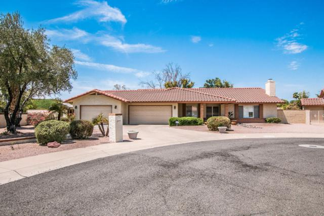 12142 S Tomi Drive, Phoenix, AZ 85044 (MLS #5806983) :: The Kenny Klaus Team
