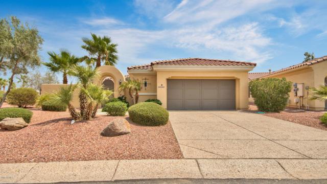 23031 N Giovota Drive, Sun City West, AZ 85375 (MLS #5806990) :: The Worth Group