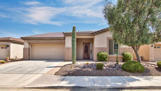 4515 E Jude Lane, Gilbert, AZ 85298 (MLS #5806997) :: The Kenny Klaus Team