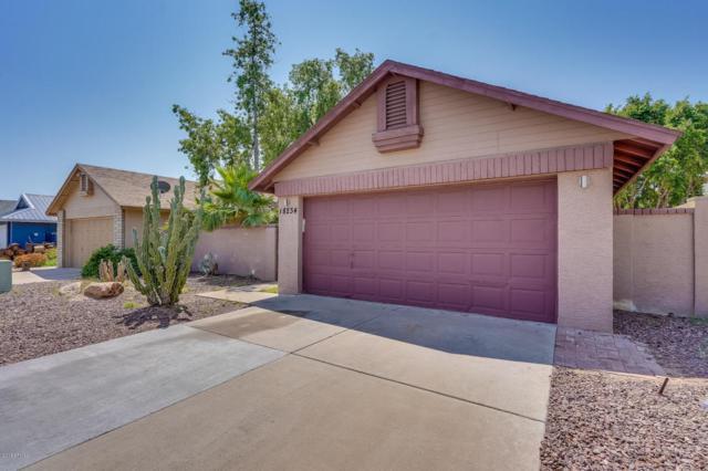 18234 N 17TH Way, Phoenix, AZ 85022 (MLS #5807001) :: The Jesse Herfel Real Estate Group