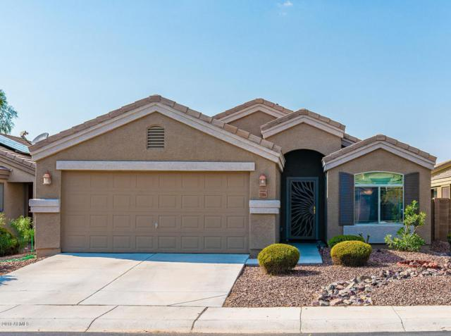 12004 W Camino Vivaz, Sun City, AZ 85373 (MLS #5807007) :: The Kenny Klaus Team