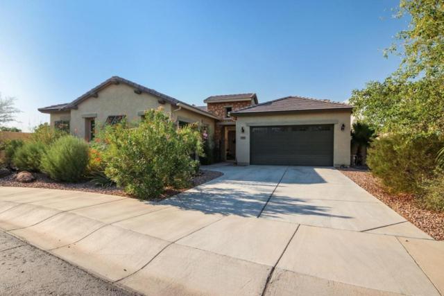 16114 W Coronado Road, Goodyear, AZ 85395 (MLS #5807064) :: The Luna Team