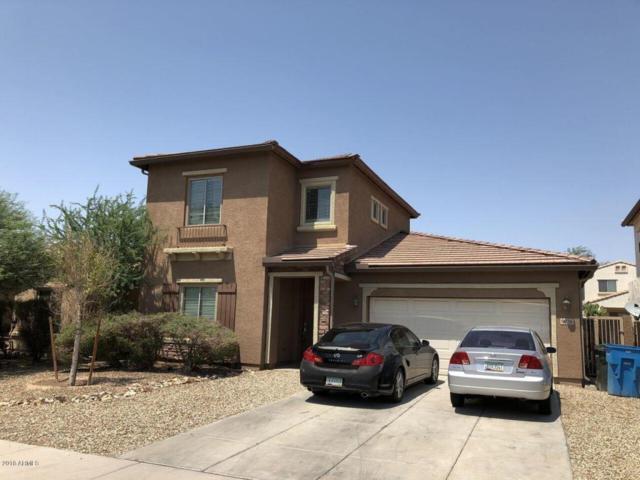9926 W Levi Drive, Tolleson, AZ 85353 (MLS #5807079) :: The Luna Team