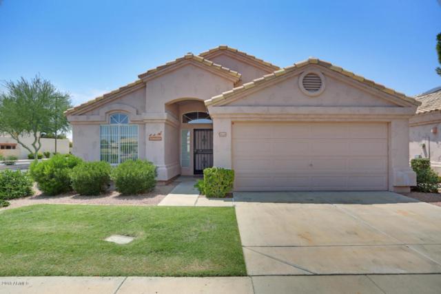 14501 W Zuni Trail, Surprise, AZ 85374 (MLS #5807083) :: Arizona Best Real Estate