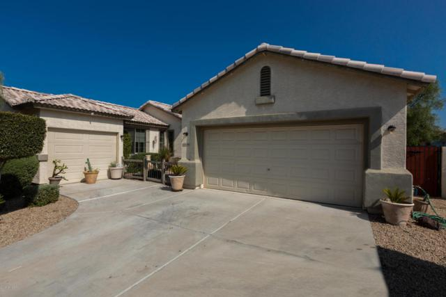 14346 W Edgemont Avenue, Goodyear, AZ 85395 (MLS #5807085) :: The Luna Team