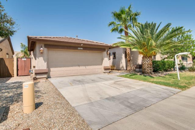 16166 N 181ST Avenue, Surprise, AZ 85388 (MLS #5807122) :: Occasio Realty