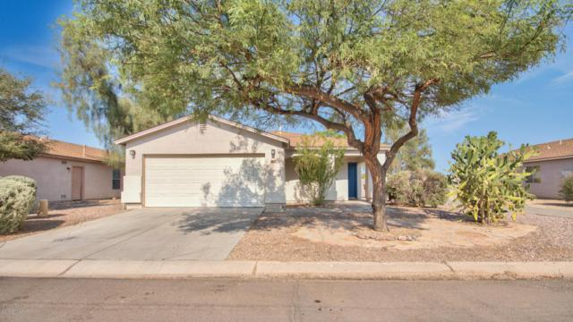 30979 N Green Trail, San Tan Valley, AZ 85143 (MLS #5807164) :: Keller Williams Realty Phoenix