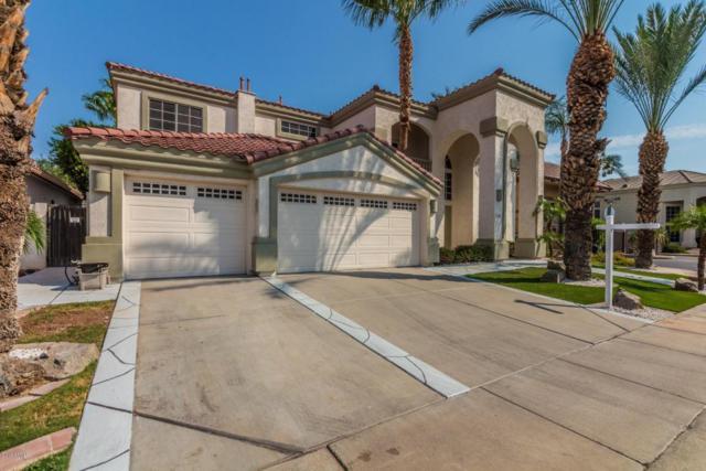 1442 W Laurel Avenue, Gilbert, AZ 85233 (MLS #5807176) :: Occasio Realty