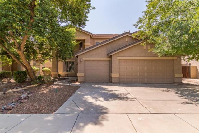 473 W Pelican Drive, Chandler, AZ 85286 (MLS #5807187) :: The W Group