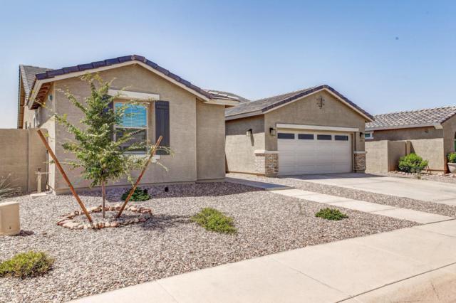 2829 E Virginia Street, Mesa, AZ 85213 (MLS #5807254) :: Yost Realty Group at RE/MAX Casa Grande