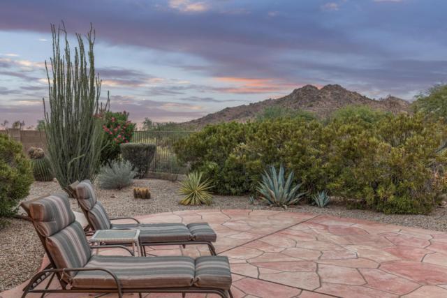 6600 E Hacienda La Noria Lane, Gold Canyon, AZ 85118 (MLS #5807269) :: Realty Executives