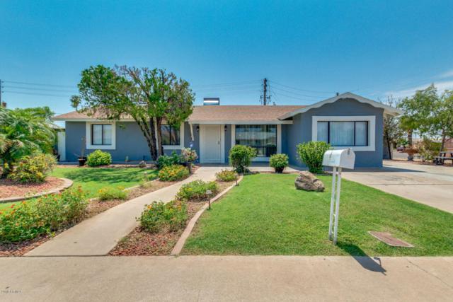 1849 W Sunnyslope Lane, Phoenix, AZ 85021 (MLS #5807316) :: Yost Realty Group at RE/MAX Casa Grande