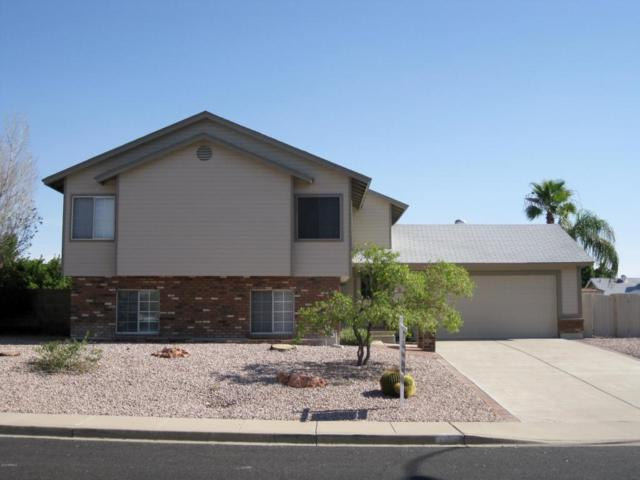 6655 E Inglewood Street, Mesa, AZ 85205 (MLS #5807317) :: Realty Executives