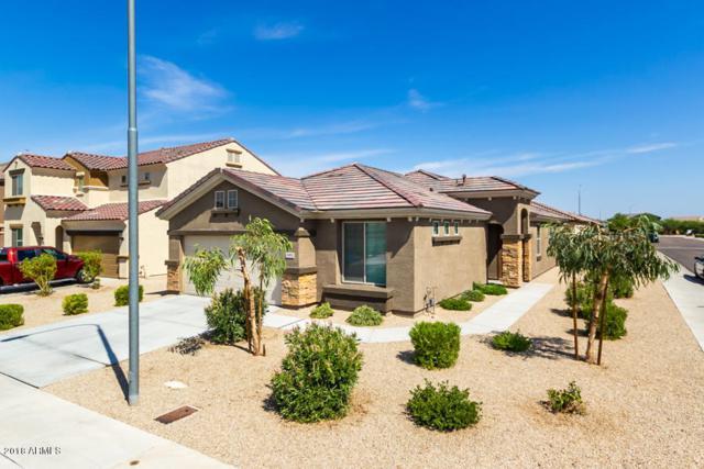 11952 W Davis Lane, Avondale, AZ 85323 (MLS #5807337) :: My Home Group