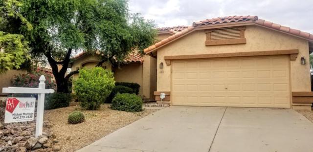 20835 N 98TH Avenue, Peoria, AZ 85382 (MLS #5807346) :: My Home Group