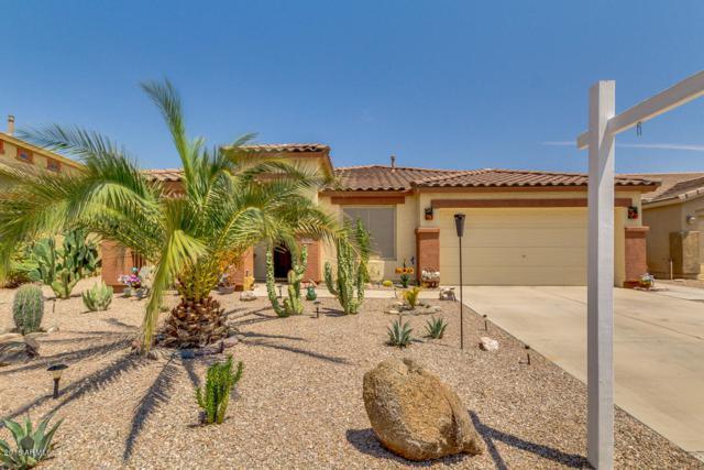 36338 W Costa Blanca Drive, Maricopa, AZ 85138 (MLS #5807349) :: Yost Realty Group at RE/MAX Casa Grande