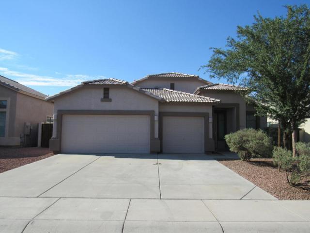 10918 W Davis Lane, Avondale, AZ 85323 (MLS #5807358) :: Phoenix Property Group