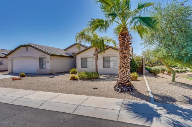 13307 W Statler Street, Surprise, AZ 85374 (MLS #5807399) :: Arizona Best Real Estate