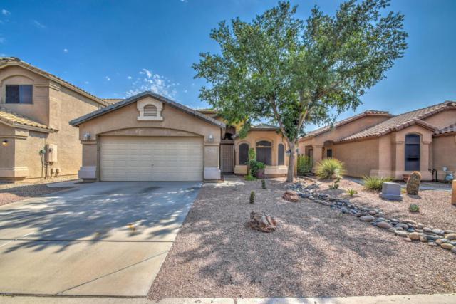 29737 N Blackfoot Daisy Drive, San Tan Valley, AZ 85143 (MLS #5807429) :: Yost Realty Group at RE/MAX Casa Grande