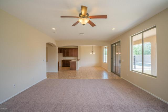 15295 W Elm Street, Goodyear, AZ 85395 (MLS #5807467) :: The Garcia Group @ My Home Group