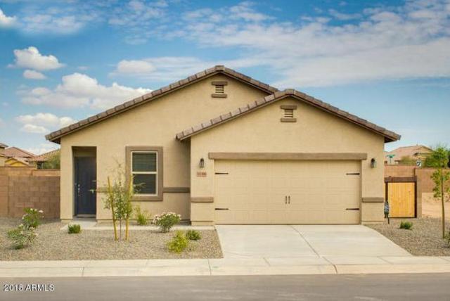 10517 E Verbina Lane, Florence, AZ 85132 (MLS #5807477) :: Yost Realty Group at RE/MAX Casa Grande