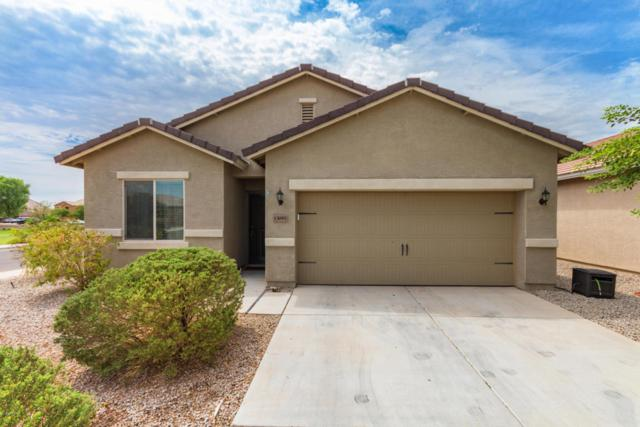 13095 E Marigold Lane, Florence, AZ 85132 (MLS #5807556) :: Yost Realty Group at RE/MAX Casa Grande