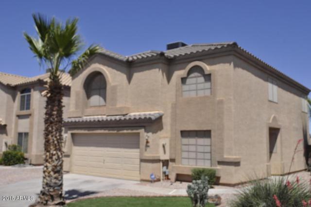 6838 E Lush Vista View, Florence, AZ 85132 (MLS #5807593) :: The Garcia Group @ My Home Group