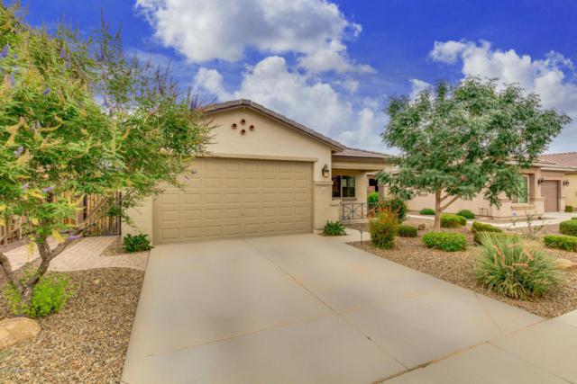 1444 W Alder Road, Queen Creek, AZ 85140 (MLS #5807690) :: Realty Executives