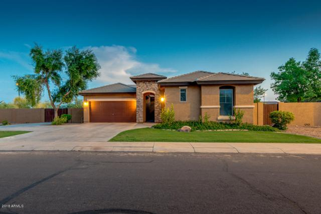 3977 E Vernon Street, Gilbert, AZ 85298 (MLS #5807702) :: Kepple Real Estate Group