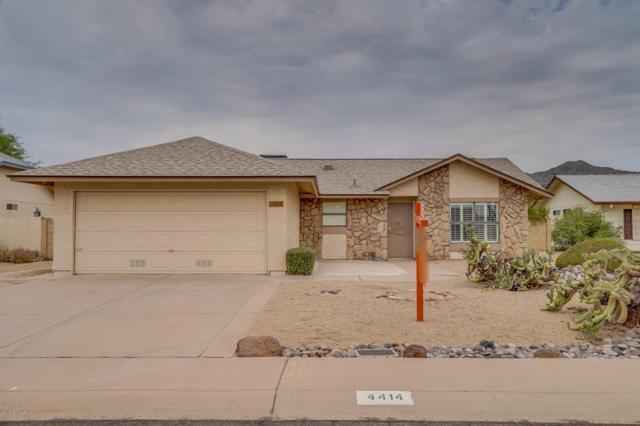 4414 E Cheyenne Drive, Phoenix, AZ 85044 (MLS #5807754) :: Kepple Real Estate Group