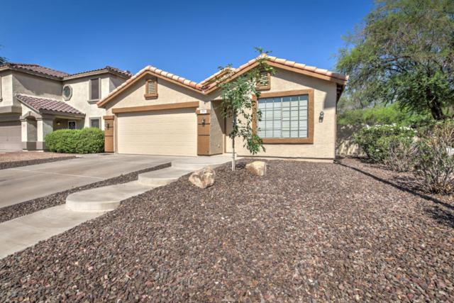 711 S Roca Street, Gilbert, AZ 85296 (MLS #5807800) :: Kepple Real Estate Group