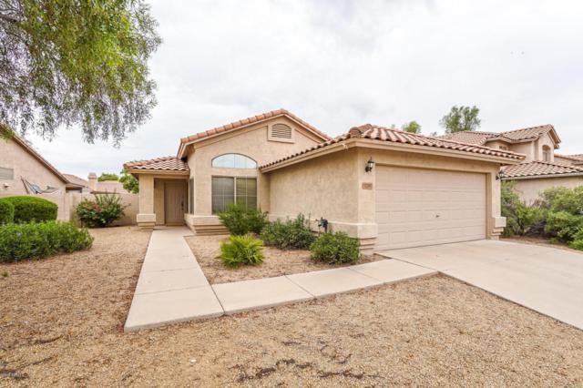 2241 S Navajo Way, Chandler, AZ 85286 (MLS #5807814) :: Kepple Real Estate Group