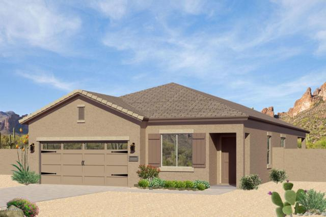 13190 E Desert Lily Lane, Florence, AZ 85132 (MLS #5807830) :: Yost Realty Group at RE/MAX Casa Grande