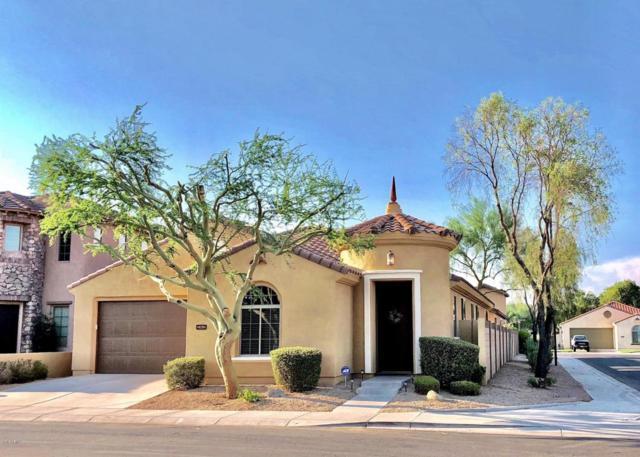 262 W Rosemary Drive, Chandler, AZ 85248 (MLS #5807832) :: Kepple Real Estate Group