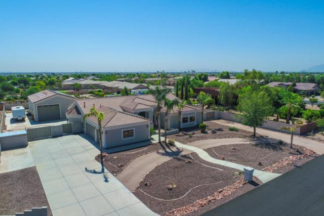 5511 N 128th Drive, Litchfield Park, AZ 85340 (MLS #5807865) :: Five Doors Network