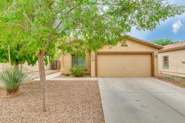 1699 E Bradstock Way, San Tan Valley, AZ 85140 (MLS #5807868) :: Realty Executives