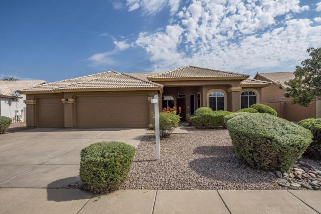 7066 E Meseto Avenue, Mesa, AZ 85209 (MLS #5807887) :: Kepple Real Estate Group