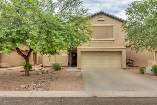 29821 N Blackfoot Daisy Drive, San Tan Valley, AZ 85143 (MLS #5807889) :: Realty Executives