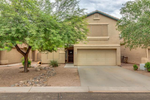 29821 N Blackfoot Daisy Drive, San Tan Valley, AZ 85143 (MLS #5807889) :: Kepple Real Estate Group