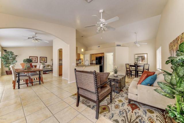 5461 W Saragosa Street, Chandler, AZ 85226 (MLS #5807909) :: Kepple Real Estate Group