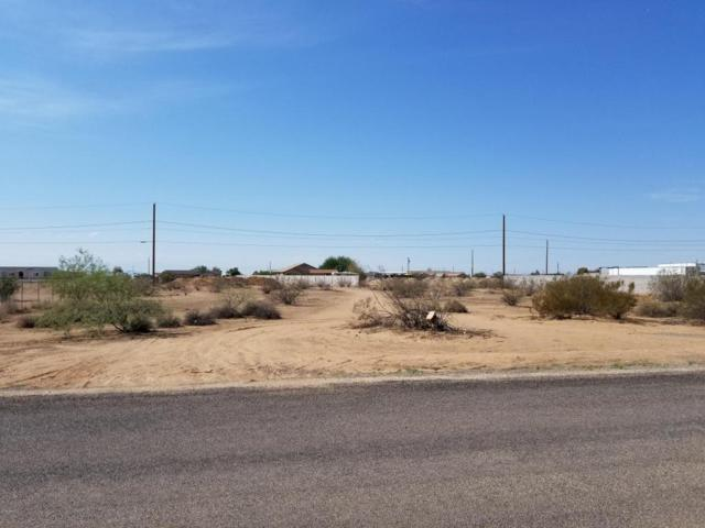 6407 E Rolling Ridge Road, San Tan Valley, AZ 85140 (MLS #5807939) :: Realty Executives