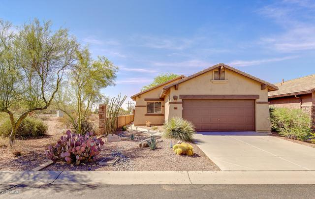 10867 E Secret Canyon Road, Gold Canyon, AZ 85118 (MLS #5807962) :: Kortright Group - West USA Realty
