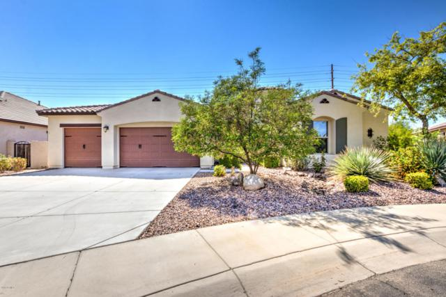 1340 S Margate Street, Chandler, AZ 85286 (MLS #5807972) :: Realty Executives