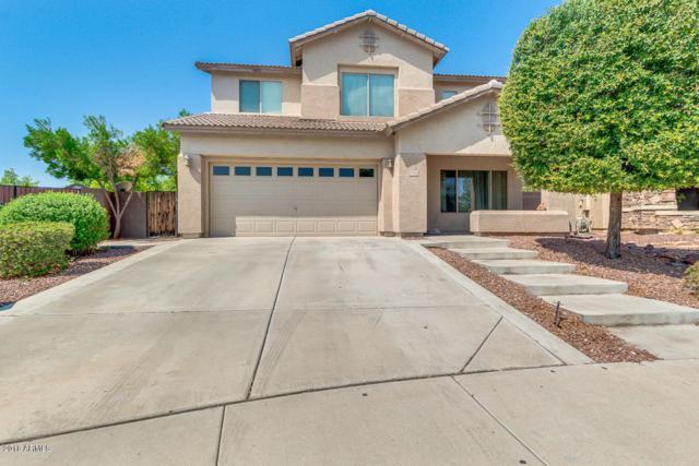 15164 N 146TH Lane, Surprise, AZ 85379 (MLS #5807973) :: Occasio Realty