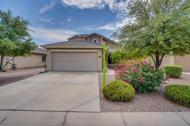 1769 W Prospector Way, Queen Creek, AZ 85142 (MLS #5807976) :: Yost Realty Group at RE/MAX Casa Grande