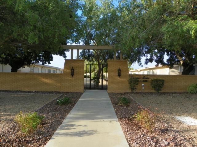 10013 W Hutton Drive, Sun City, AZ 85351 (MLS #5808001) :: Brett Tanner Home Selling Team