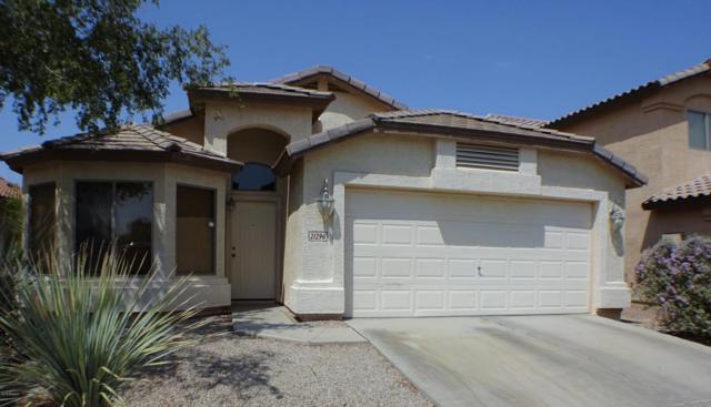 21296 N Van Loo Drive, Maricopa, AZ 85138 (MLS #5808025) :: Yost Realty Group at RE/MAX Casa Grande